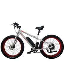 Fantas Snow man breeze fat tire electric mountain bike