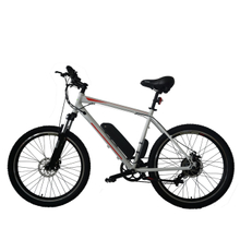 Fantas city hunter 005 city electric bicycle